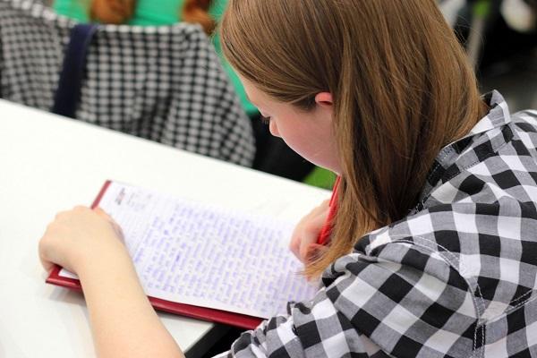 Onderwijs hoogbegaafdheid schrijven